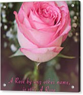 A Rose By Any Other Name Is Still A Rose Acrylic Print