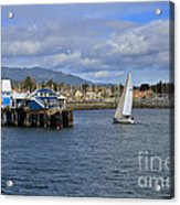 A Sailing Yacht Passes The Wharf In Sidney Harbour Acrylic Print