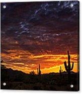 A Sentinel Sunset  Acrylic Print