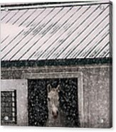 A Snowfall At The Stable Acrylic Print