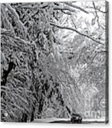A Snowy Drive Through Chestnut Ridge Park Acrylic Print