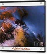 A Splash Of Autumn Acrylic Print