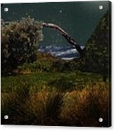 A Sprinkling Of Stars Acrylic Print