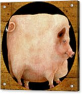 A Square Pig In A Round Hole... Acrylic Print