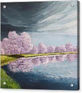 A Storm Over Cherry Trees Acrylic Print