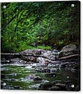 A Stream In Embden Acrylic Print