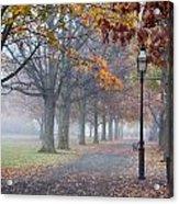 A Stroll In Salem Fog Acrylic Print