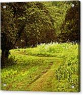 A Summer's Trail Acrylic Print