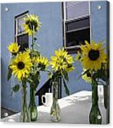 A Sunny Day Acrylic Print by Michael Glenn