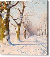 A Sunny Winter's Day Acrylic Print