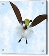A Tackiebird Closeup Acrylic Print
