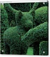 A Topiary Bear In Alice Braytons Green Animals Acrylic Print