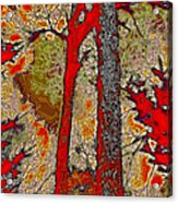 A Touch Of Autumn Abstract V Acrylic Print