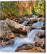 A Touch Of Autumn At Skinny Dip Falls Acrylic Print