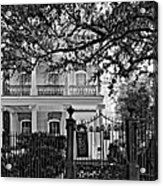 A Touch Of Class Monochrome Acrylic Print