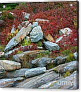 A Touch Of Color Acrylic Print