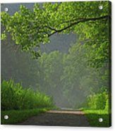 A Touch Of Green Acrylic Print
