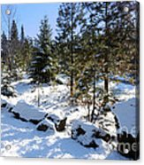 A Touch Of Snow Acrylic Print