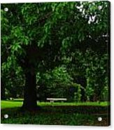 A Tree And A Bench Acrylic Print