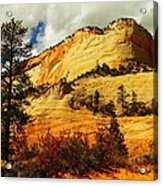 A Tree And Orange Hill Acrylic Print