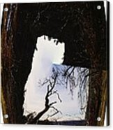 A Tree In A Square Abstract Acrylic Print