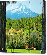 A Tree Swing Is Seen On A Summer Day Acrylic Print