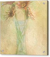 A Vase Of Gerbera Daisies In The Sun Acrylic Print