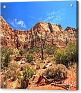 A View Along The Watchman Acrylic Print