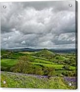A View To Colmer's Hill Acrylic Print