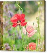 A Vintage Gardeners Notebook Acrylic Print