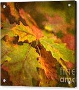 A Vision Of Fall Acrylic Print