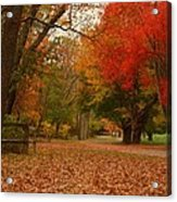 A Walk In Autumn - Holmdel Park Acrylic Print