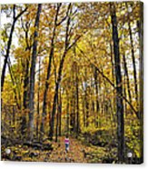 A Walk In The Dune Land Forest Acrylic Print