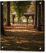 A Walk In The Park Acrylic Print by Cindy Rubin