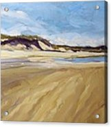 A Walk On The Beach Acrylic Print by Colleen Kidder