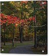 A Walk Through Fancher Davidge Park Acrylic Print