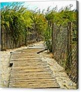 A Walk To The Beach Acrylic Print
