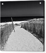A Walk To The Sea Acrylic Print