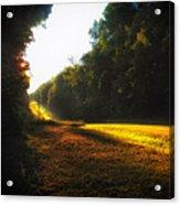 A Warm Michigan Sunrise Acrylic Print