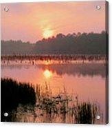 A Wetlands Sunrise Acrylic Print by JC Findley