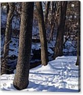 A Winter Day In New York Acrylic Print