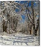 A Winter Road Acrylic Print