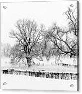A Winter Scene Acrylic Print