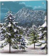 A Winter Scene... Acrylic Print