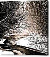 A Winter Stream 2 Acrylic Print