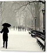 A Winter Stroll Acrylic Print