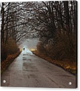 A Winter Walk Acrylic Print