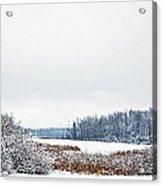 A Winters Dream Acrylic Print