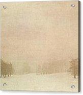 A Winter's Fog II Acrylic Print