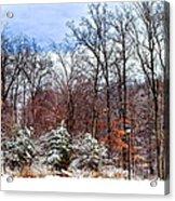 A Winters Scene Acrylic Print